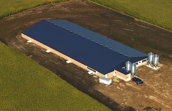 Hog confinement building